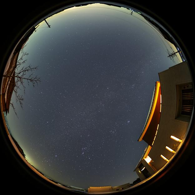 21allstar0113c51ut12581324psq