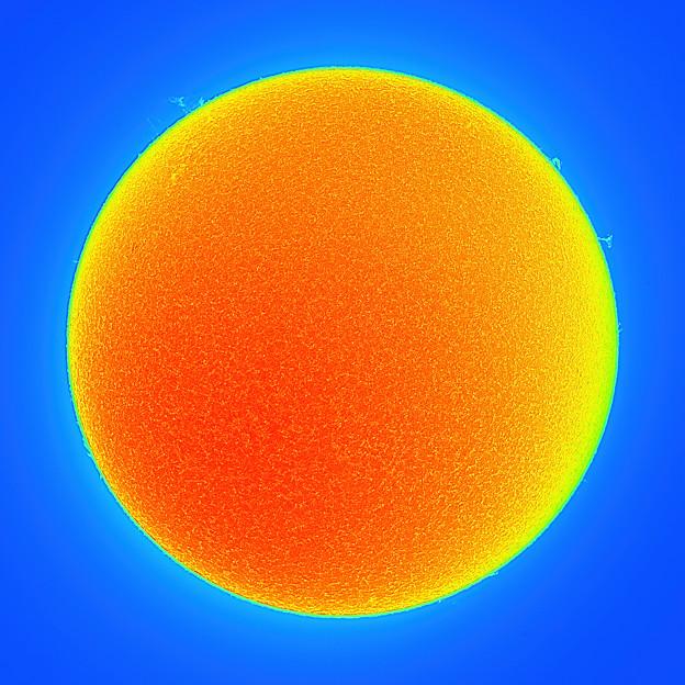 21sun0213c82ut0101dmn0275pre-densq