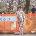 Photos: 『護美』