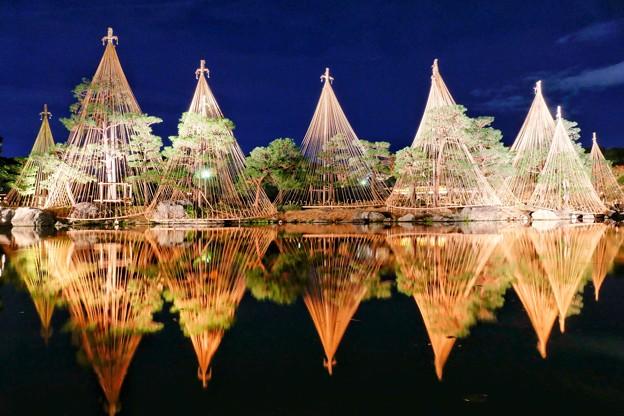 ライトアップ・白鳥庭園(名古屋市)