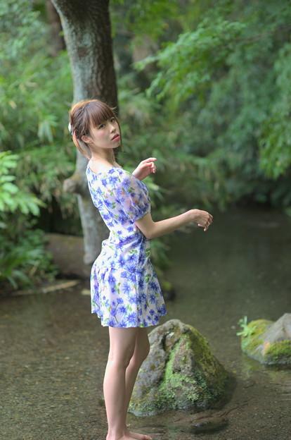 水辺の妖精