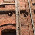 トクさんぽ11 懐かしの街灯