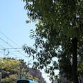 Photos: 阪堺電車ー2