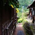 Photos: 妻籠宿にて3