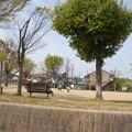 Photos: 1404_02