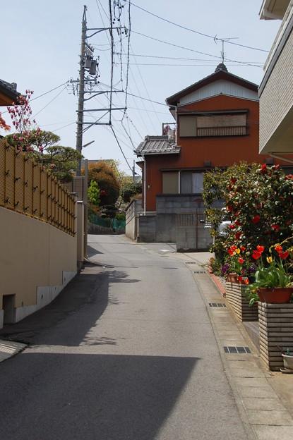 Photos: 1404_12