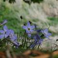 Photos: 19.04_06