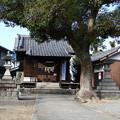 Photos: 19.12_04熊野神社