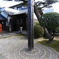 Photos: 19.12_09三河善光寺