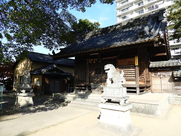 19.12_11諸神神社