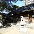 Photos: 19.12_11諸神神社