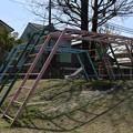 Photos: 20-04_07宮野入公園