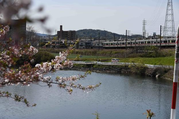 Photos: 20-04_17