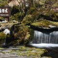 Photos: 大雪旭岳源水