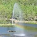 Photos: 七色の噴水c