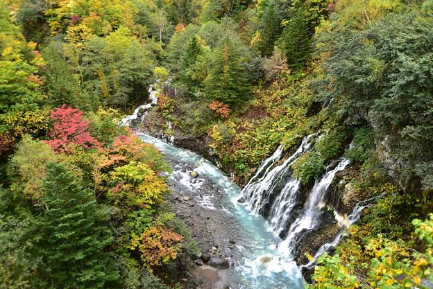白髭の滝と紅葉
