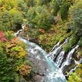 Photos: 白髭の滝と紅葉