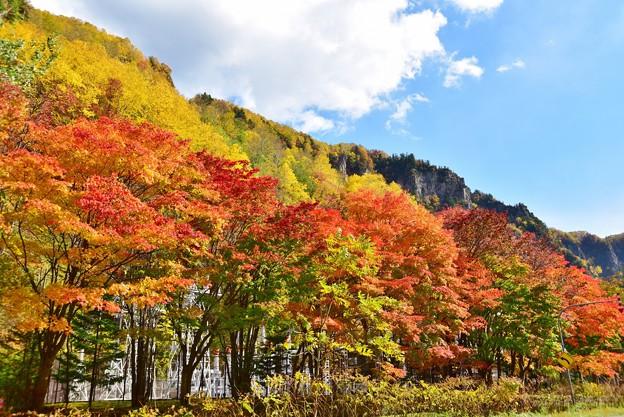 層雲峡の紅葉