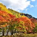 Photos: 層雲峡の紅葉