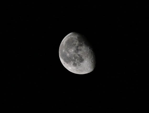 2014年4月20日の月 IMG_9345
