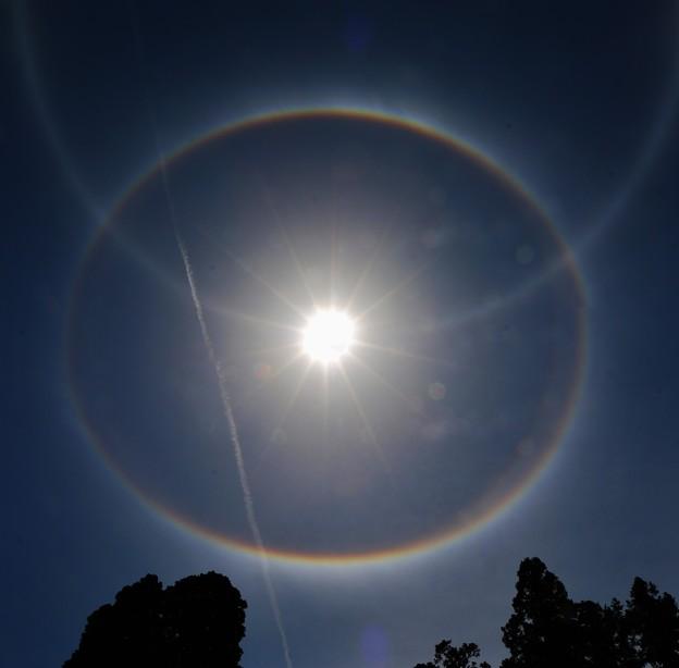 太陽 >:<日 暈 IMG_9275