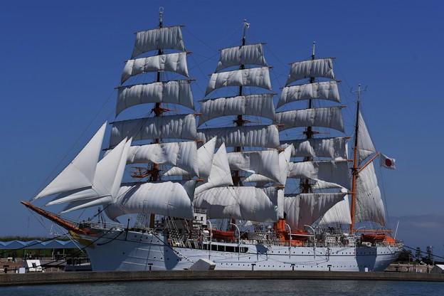 DSC_4872 海王丸総帆展帆
