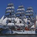 写真: DSC_4872 海王丸総帆展帆