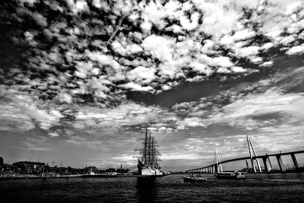 ある日の海王丸パーク  15・08・29 IMG_2802