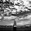 写真: ある日の海王丸パーク  15・08・29 IMG_2802