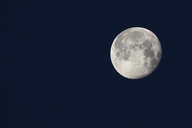 写真: 夜明けの月 IMG_0171