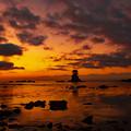 写真: 夜明け前の雨晴海岸 DSC_8686