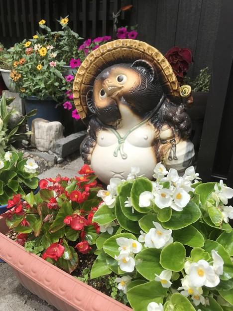 花に囲まれて IMG_9379