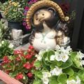 写真: 花に囲まれて IMG_9379