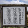 DSC_9966