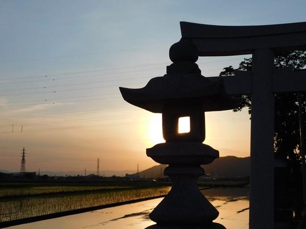 石灯籠の中の夕陽x