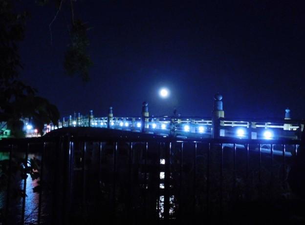 Photos: 月夜の瀬田の唐橋