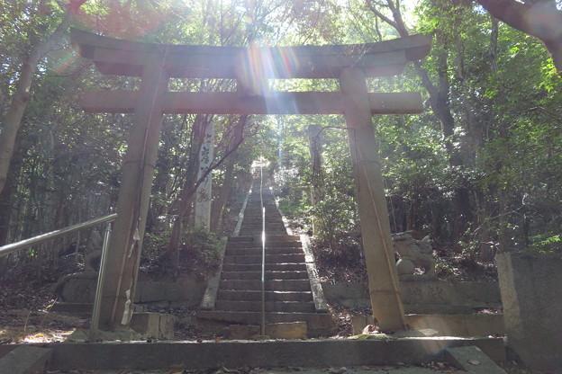 太老神社002
