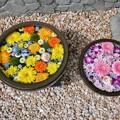 Photos: 蕎麦の田丸屋さんの花手水