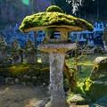 山寺の苔灯籠