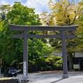Photos: 椋神社(下吉田)