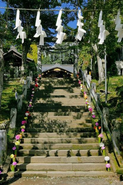 Photos: 小鹿神社参道