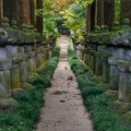 秋の平林寺1