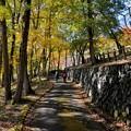 秋の巡礼路