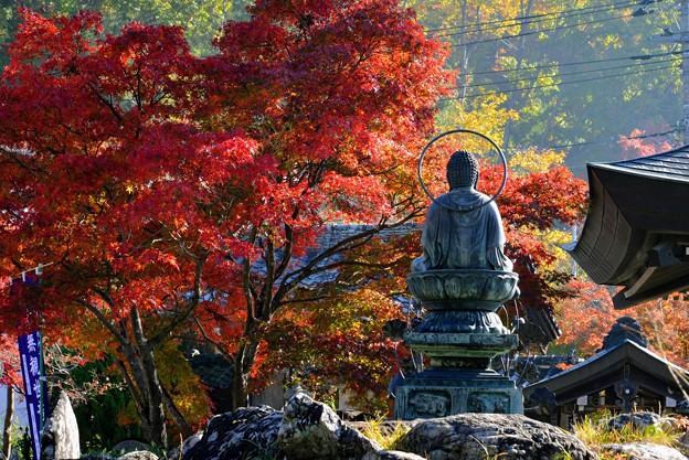 札所一番・秋景色