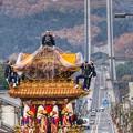 Photos: ハープ橋を背に