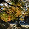 西善寺の秋