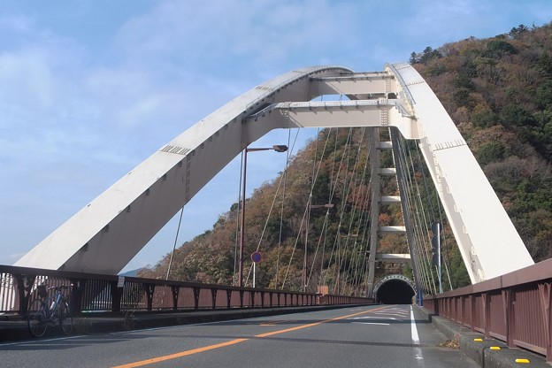大棚沢橋/向山トンネル