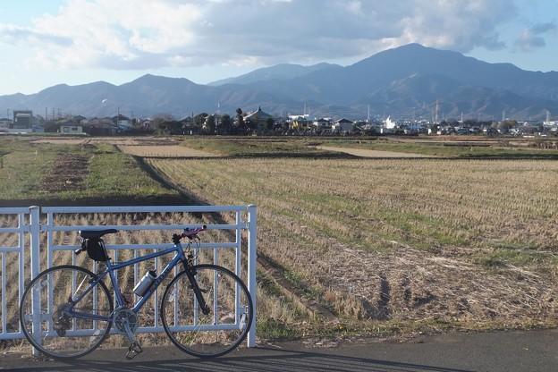 田園/大山