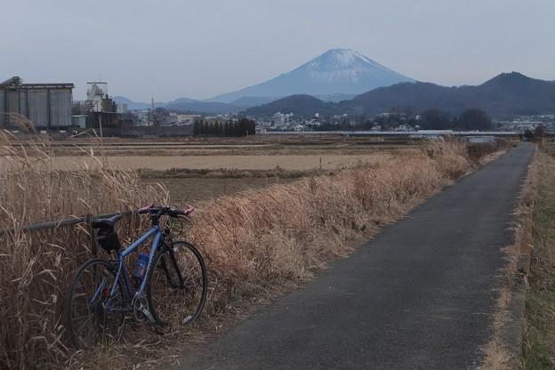 農道/富士山