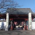 Photos: 金目観音(金目山光明寺)仁王門